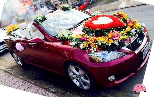 Xe hoa Lexus đỏ Biên Hòa